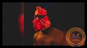 CeeyChris – Insetos (Afro Mix)