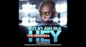 Kojo Akusa – Hey (Da Capo's Dub Touch)