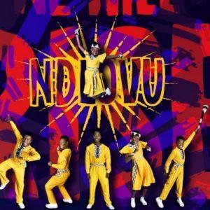Ndlovu Youth Choir – Easy On Me Acapella