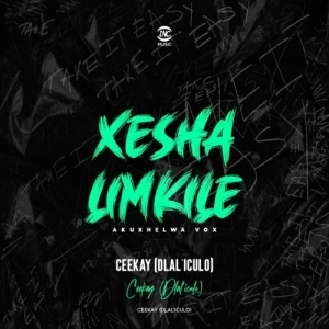 Ceekay (dlal'iculo) – Xesha Limkile (akuxhelwa Vox)