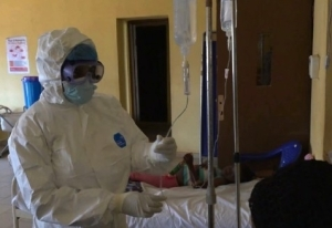 Lassa fever toll now 161 as two doctors, 14 others die in Bauchi