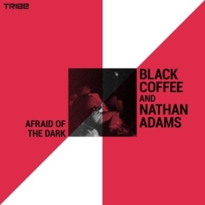 Black Coffee, Nathan Adams – Afraid of the Dark (Original Mix)