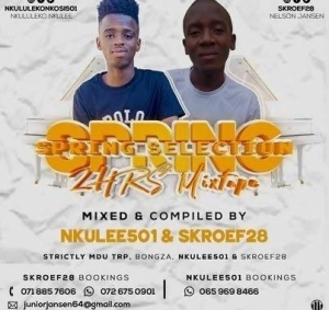 Nkulee 501 & Skroef28 – Spring Selection Mix (Strictly Mdu aka TRP & Bongza)