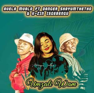 Danger Shayumthetho & K-zin – Dedeli Asimbonge ft. Chronic Sound