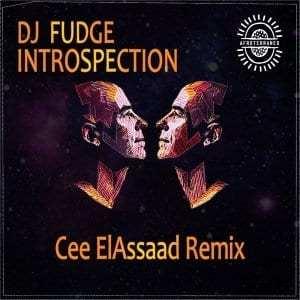 DJ Fudge – Introspection (Cee ElAssaad Introspective Reprise)
