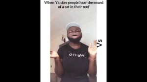 Lasisi Elenu - How Americans React To A Cat In Their Roof vs How NIGERIANS React (Comedy Video)