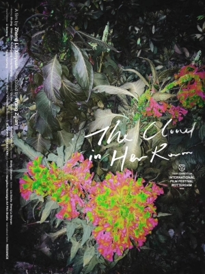The Cloud in Her Room (2020) (Chinese)