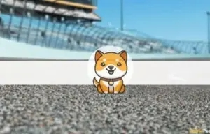 Baby Doge Coin Will Appear on NASCAR Xfinity Series
