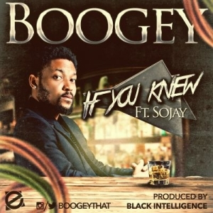 Boogey - If You Knew Ft. Sojay