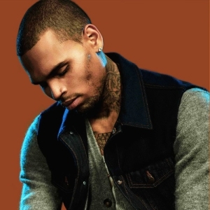Chris Brown - Work (Snippet)