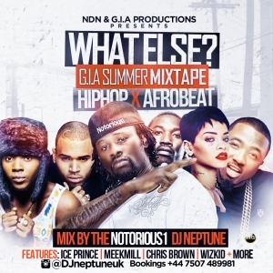 DJ Neptune Uk - What Else Mix