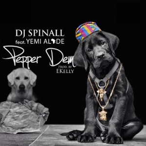 My Story BY DJ Spinall
