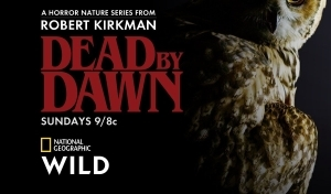 Dead by Dawn SEASON 1