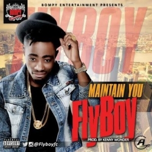 Fly Boy - Maintain You