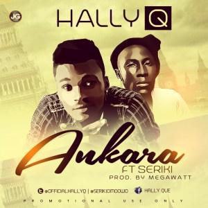 Hally Q - Ankara Ft. Seriki (@officialhallyq @serikiomoowo)