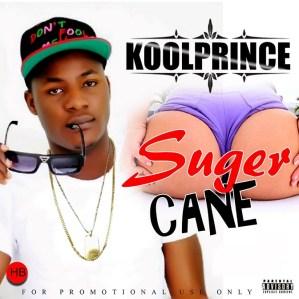 KoolPrince - Sugar Cane (Remix) Ft. Qdot x Deejay Mummy's Pet