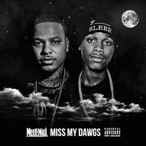Meek Mill - Miss My Dawgs Ft. Travi$ Scott & Strap
