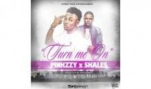 Pinkzzy - Turn Me On Ft. Skales