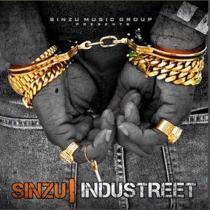 Sinzu - Money In My Pocket