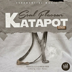 Soul Flavour - Katapot (Reekado Banks Cover)
