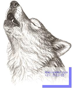 Story: The Last Wolf - Season 1 - Episode 13