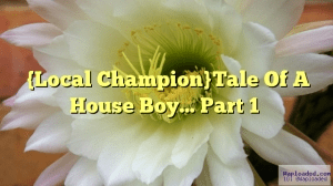 Tale Of A House Boy (Local Champion)