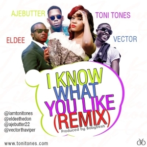 Toni Tones - I Know What You Like (Remix) ft Vector, eLdee & Ajebutter 22