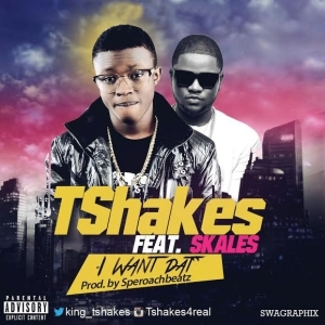 Tshakes - I Want Dat Ft. Skales