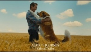A Dogs Journey (2019) [HDCam-1xBet] (Official Trailer)