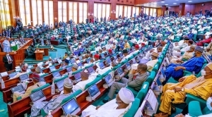 Make Laws To Regulate Birth Rate In Nigeria – BPP DG Asks Lawmakers