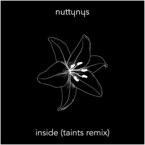 Nutty Nys – Inside (Taints Remix)
