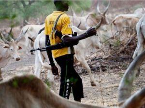 Fulani Have Killed 50 Residents, Burnt 254 Houses – Kaduna Monarch