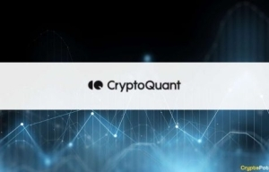 Blockchain Analytics Firm CryptoQuant Closes a $3M Funding Round Led by Hashed