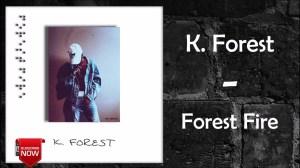 K. Forest - Brown Eyes Noir ft. CJ Fly