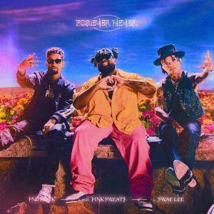 PnB Rock Ft. Swae Lee & Pink Sweats – Forever Never (Instrumental)
