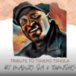 Dj Manzo SA & Tumisho – Tribute to Tshepo Tshola