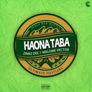 Zinkz Dee – Haona Taba ft Malome Vector