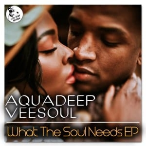 Veesoul, Aquadeep – The Groove (feat Craig)