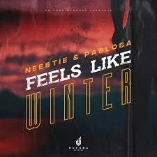 Neestie & PabloSA – Feels Like Winter (Afro Mix)