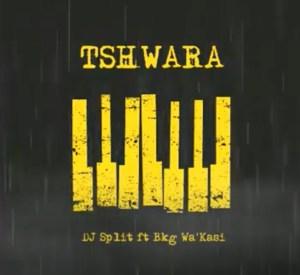 DJ Split – Tshwara Ft. Bkg Wa'Kasi