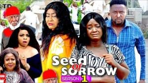 Seed Of Sorrow (2020 Nollywood Movie)