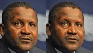 Dangote cement allegedly sacks over 3000 staff without notice