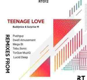 Buddynice & Surprise M – Teenage Love (Remixes) EP