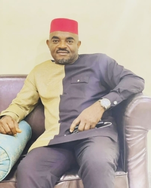 """BBNaija: """"Nollywood Isn't A Dumping Ground For Evictees"""" — Actors Guild President, Emeka Rollas"""