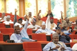 Why APC Senators Vote Against Electronic Transfer Of Results
