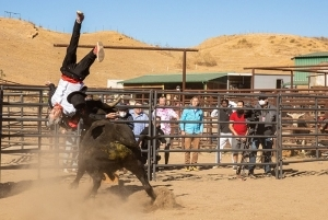 Jackass Forever Trailer Showcases Ridiculous Stunts
