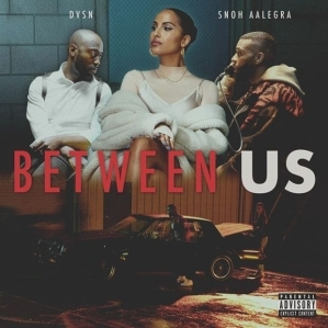 DVSN Ft. Snoh Aalegra - Between Us