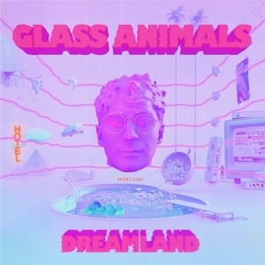 Glass Animals – Hot Sugar