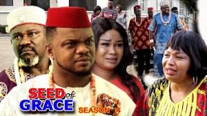 Seed Of Grace Season 4
