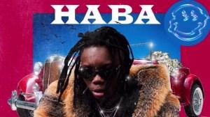 Blaqbonez – Haba (INSTRUMENTAL)